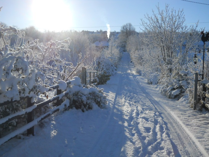 bealtaine Cottage in the snow