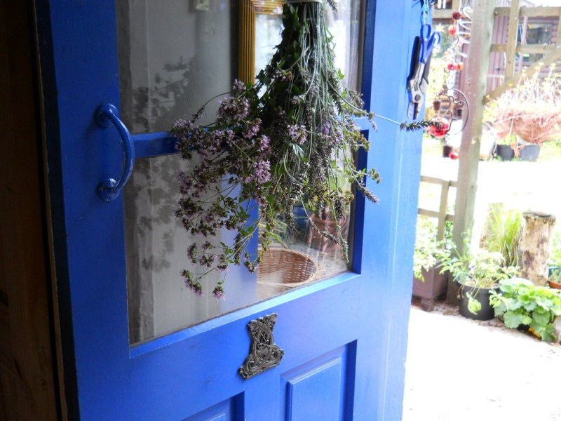 Lavender drying on the back door of my cottage