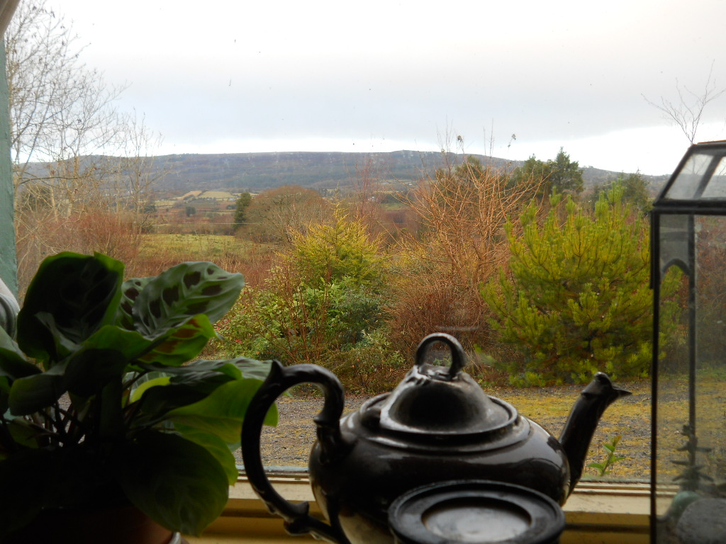 Bealtaine Cottage 11 Dec 10 022