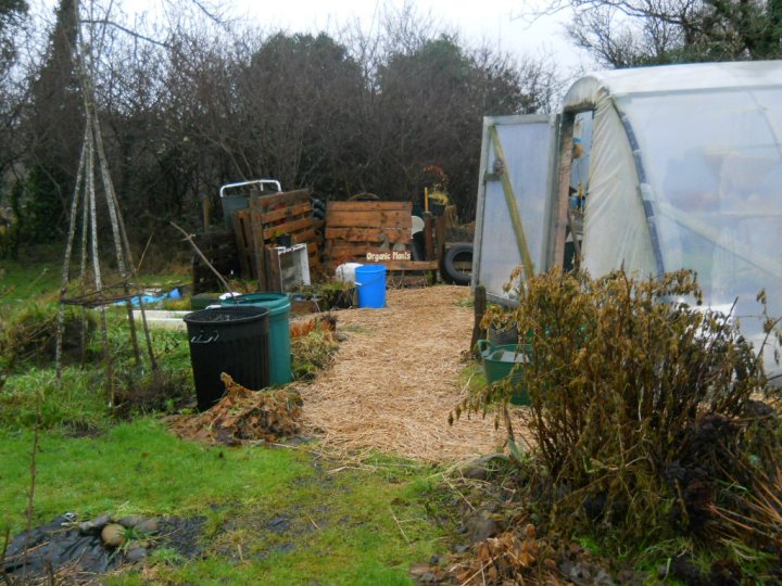 permaculture polytunnels