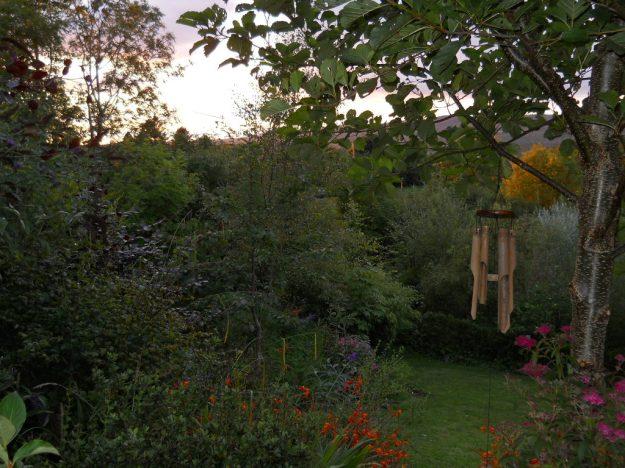 Bealtaine Cottage Permaculture, Lush Abundance