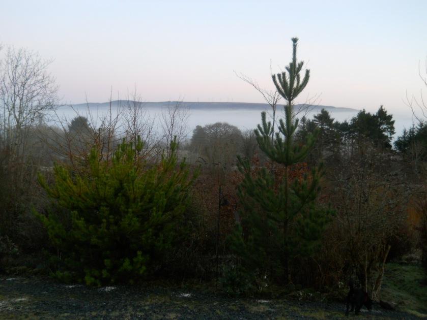 Bealtaine Cottage Feb 2012