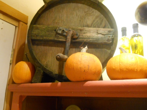 Bealtaine Cottage Permaculture Pumpkins