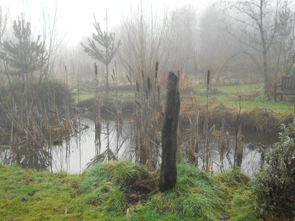 Bealtaine Cottage Feb 2011 019