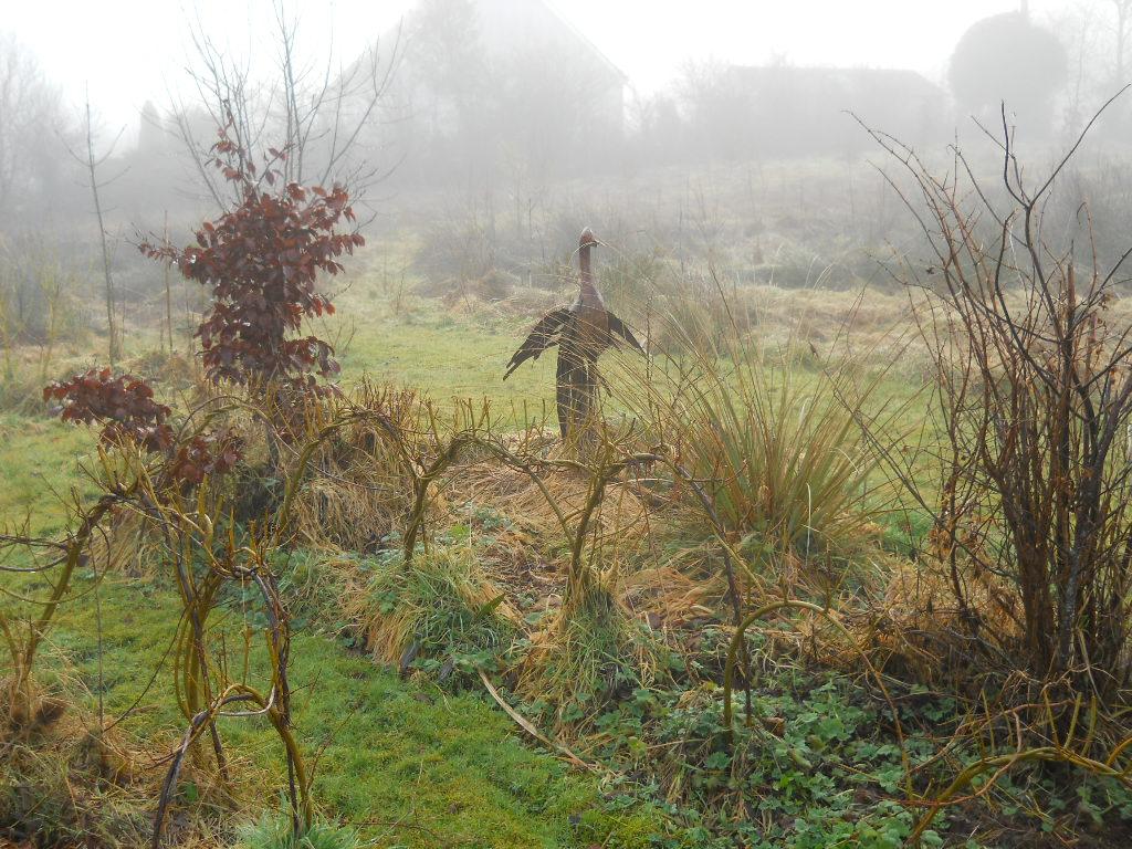 Bealtaine Cottage Feb 2012 Permaculture Bog Garden