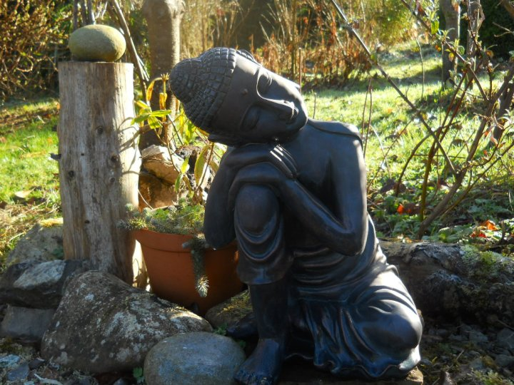 Bealtaine Cottage Permaculture