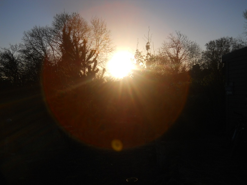Bealtaine Cottage Permaculture winter sun