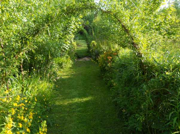 Midsummer Day in the permaculture gardens of Bealtaine Cottage
