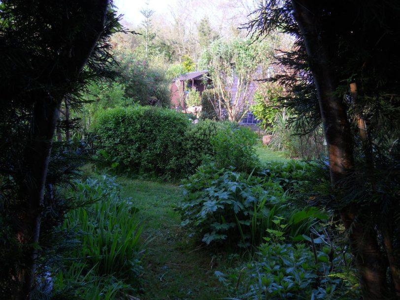 Bealtaine Cottage Ballyfermoyle 044