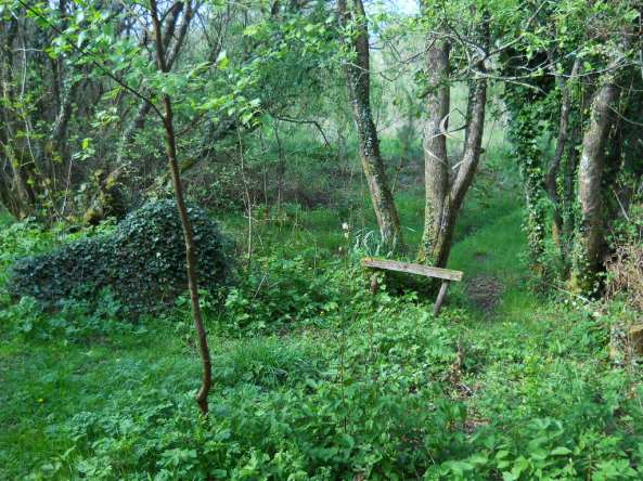 Fairy Dell at  Bealtaine Cottage011