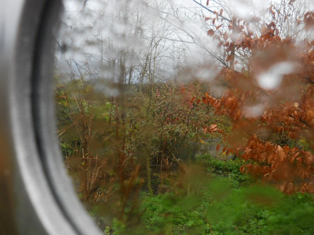 Mirror in the garden at  Bealtaine Cottage