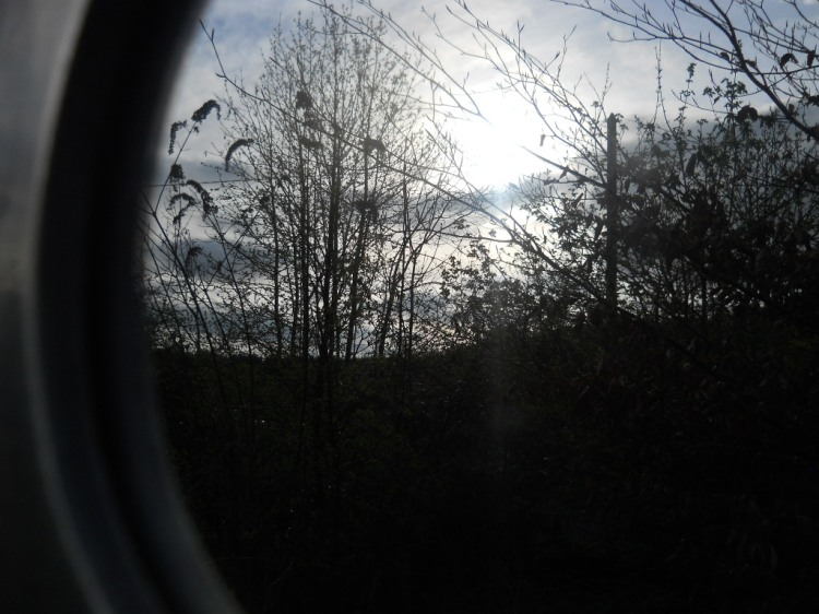 Mirror reflecting Gaia at Bealtaine CottagePermaculture Blog 024