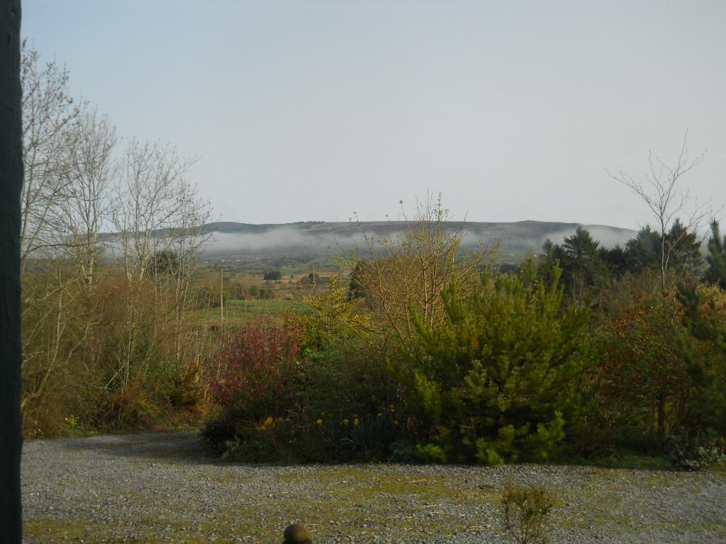April 2011. Permaculturecottage 001