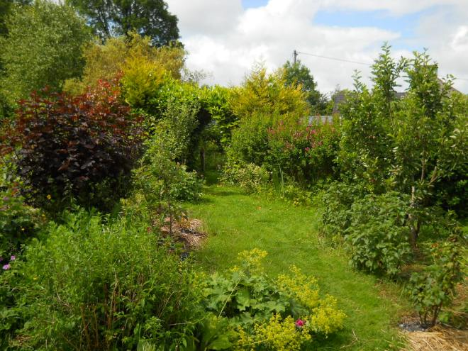 June 2011 permaculture cottage 021