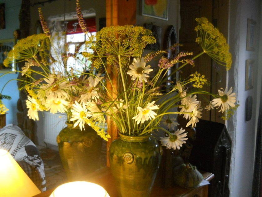 fennel in a vase at Bealtaine Cottage
