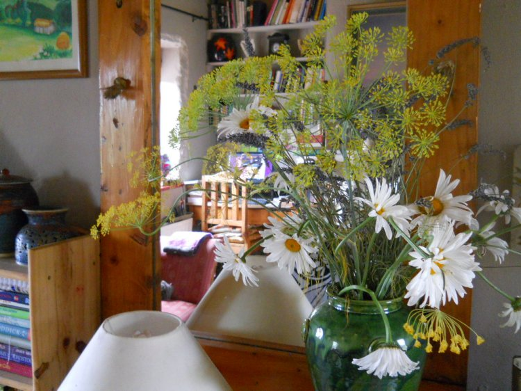 Fennel and daisy flower arrangement at Bealtaine Cottage
