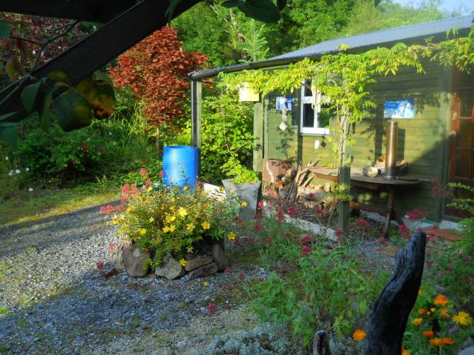 morning sun at Bealtaine Permaculture Cottage