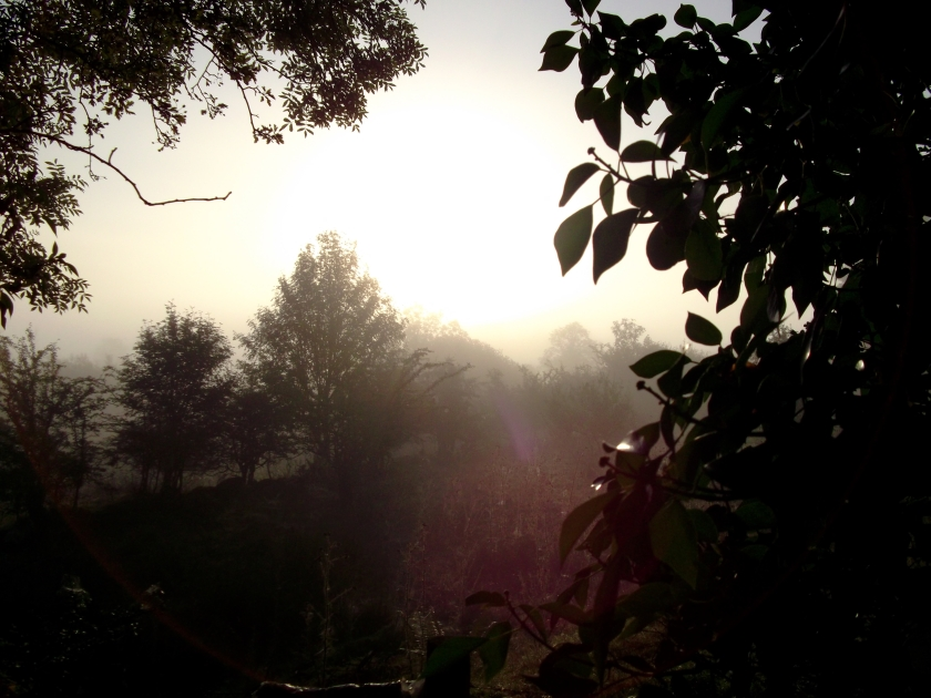Summer dawn at Bealtaine Cottage Ireland