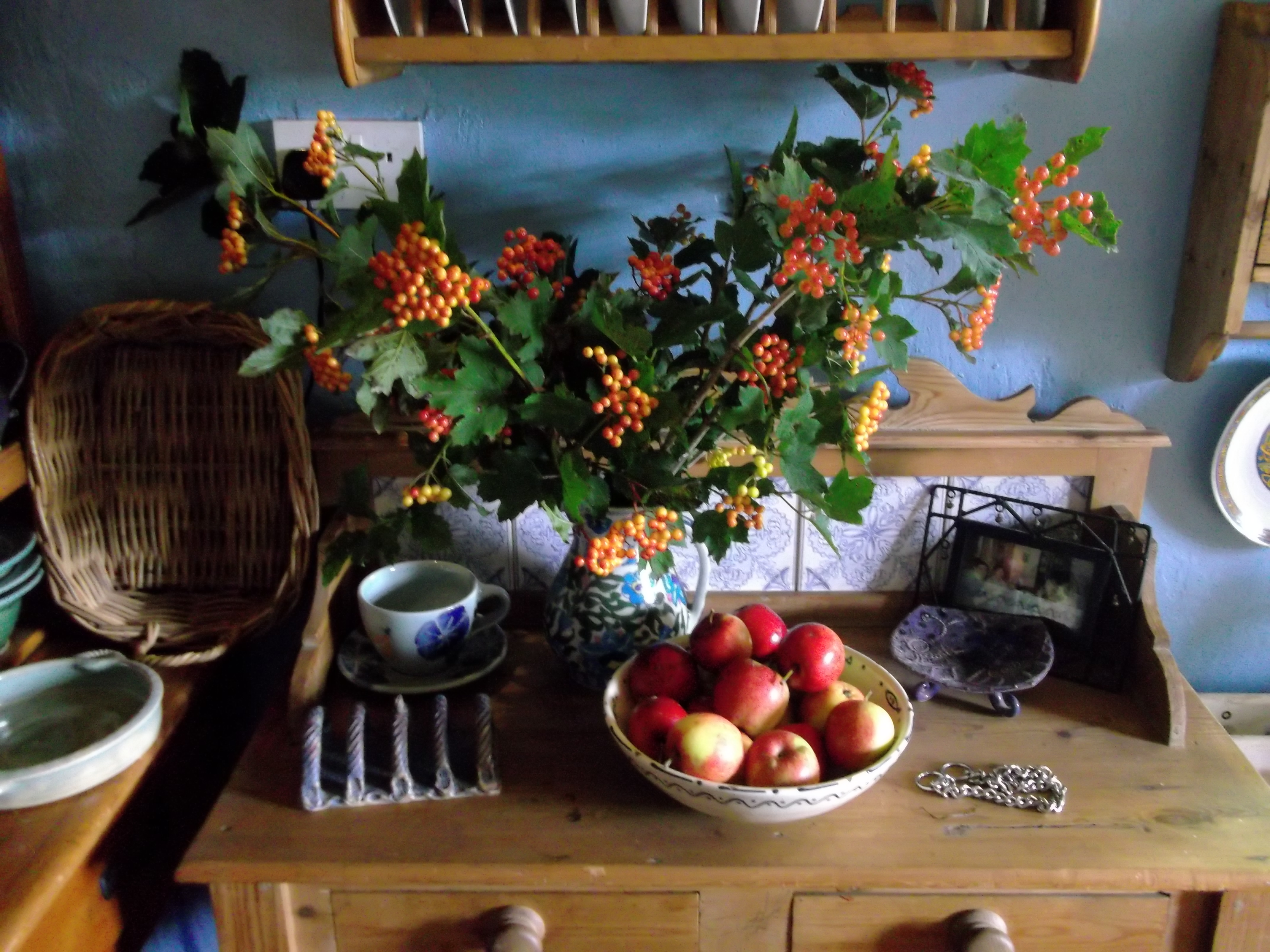Permaculture cottage autumn apples and gelder rose bealtaine cottage the oldest - The writers cottage inspiration by design ...