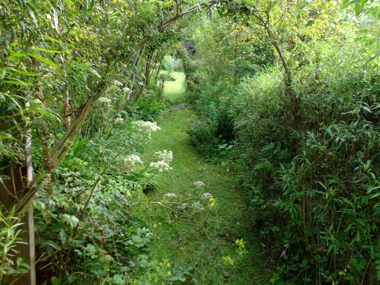 August 2011 permaculture cottage 014