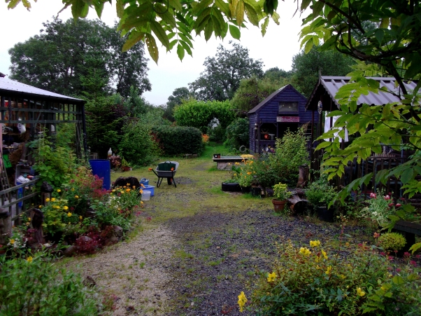 Permaculture Cottage August 2011 003