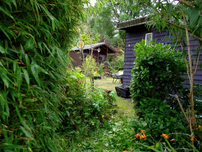 Diverse planting with permaculture at Bealtaine cottage