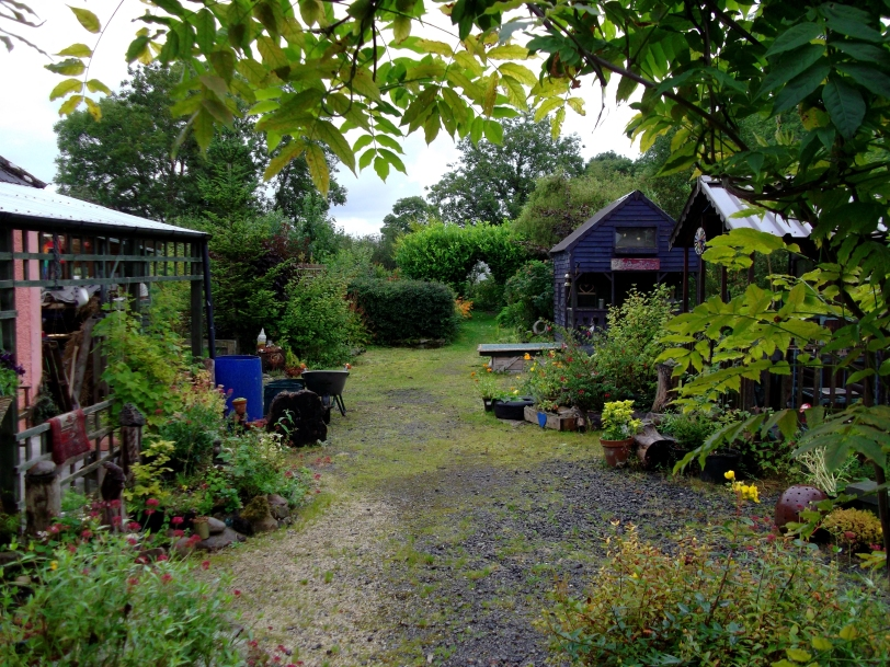 permaculture at Bealtaine cottage