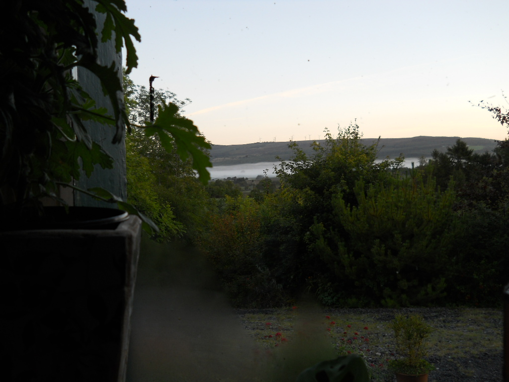 view morning 001