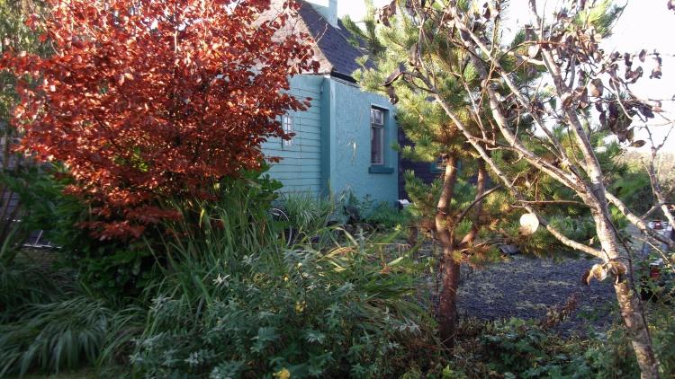 Bealtaine Cottage Nov 2011 019