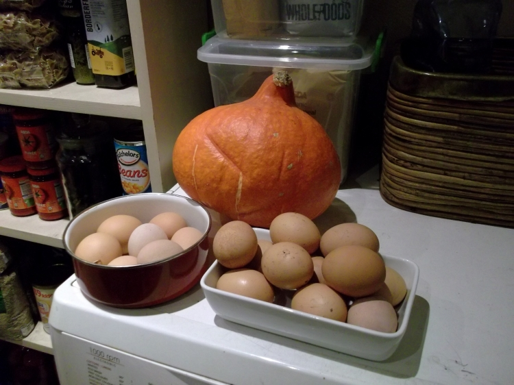 eggs and pumpkins at bealtaine Cottage
