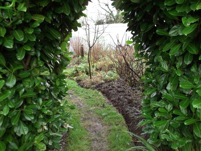 Jan 12 Bealtaine Cottage 002