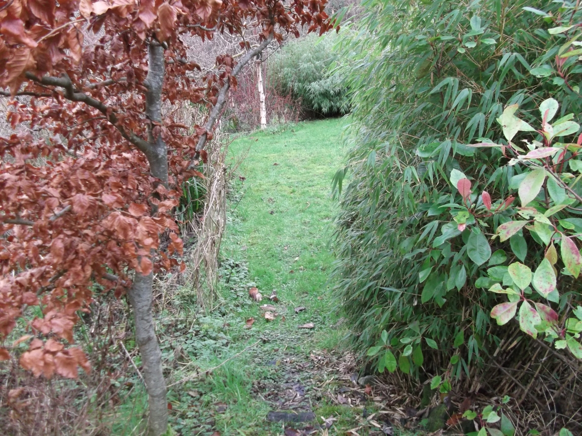 Jan 12 permaculture cottage 008