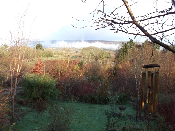 Feb 2012 Permaculture @ Bealtaine Cottage 004