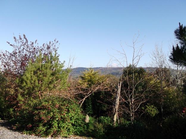 Bealtaine Cottage blue skies
