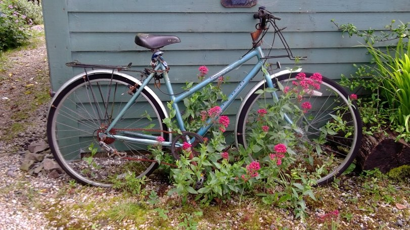Bealtaine Cottage bicycle and valerian