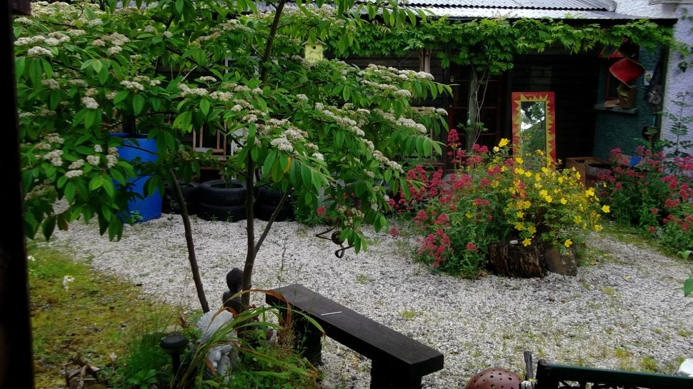 The Permaculture Gardens of Bealtaine Cottage