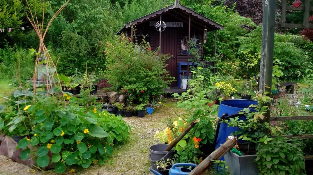 Bealtaine Cottage garden shed
