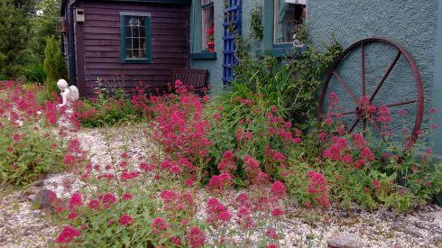 Bealtaine Cottage 009