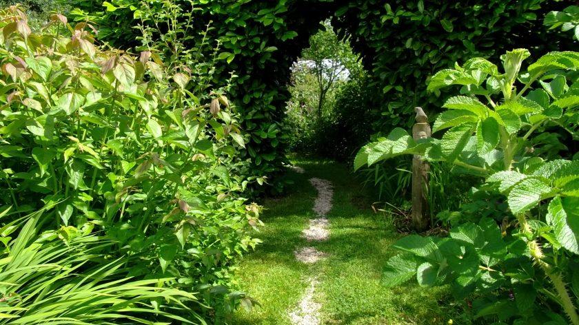 Bealtaine Cottage laurel Archway