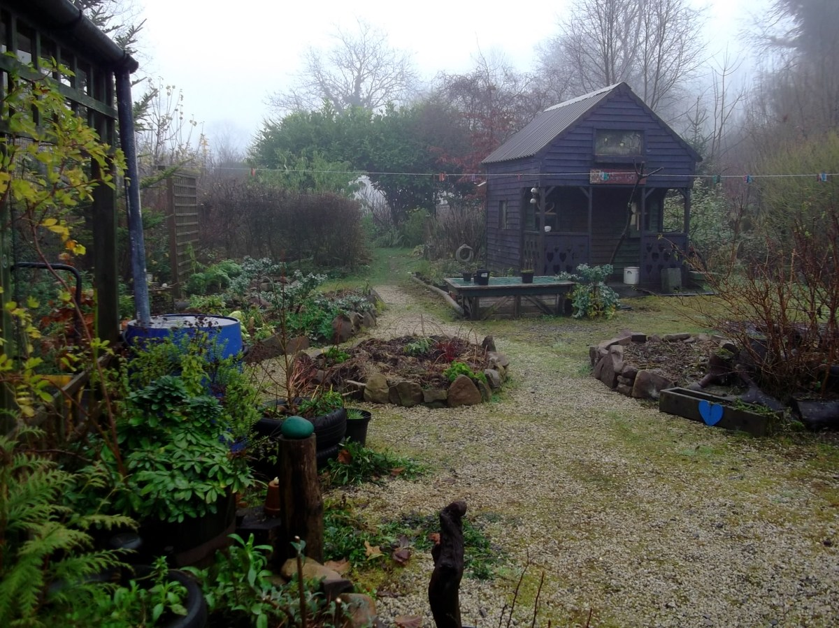 Midwinter mist at Bealtaine Cottage