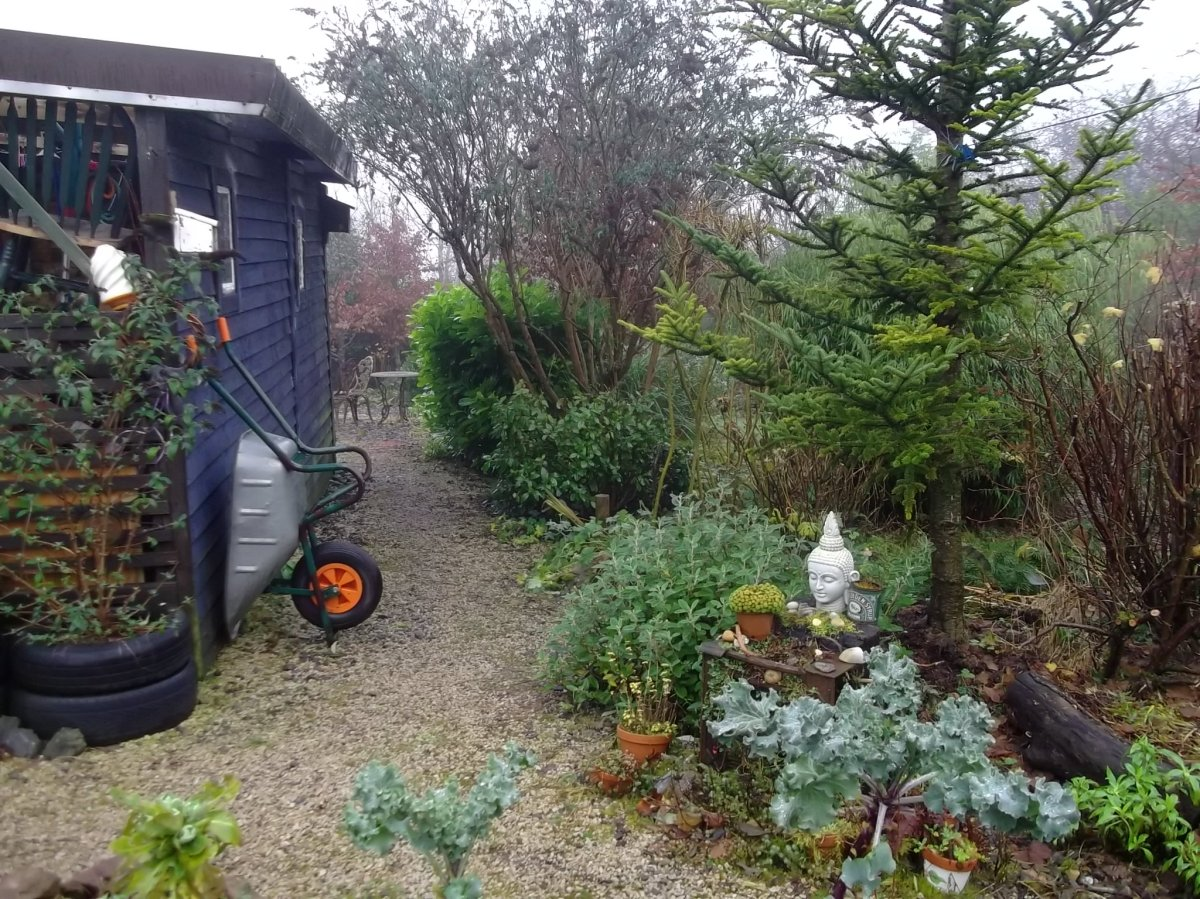 The Barn at Bealtaine Cottage, midwinter 2012