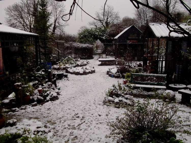 Bealtaine Cottage permaculture smallholding in the snow