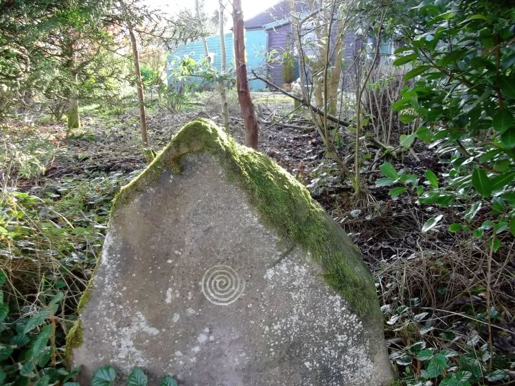 The standing stone at Bealtaine Cottage February 2013