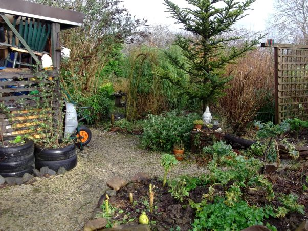 bealtaine Cottage in February 2013