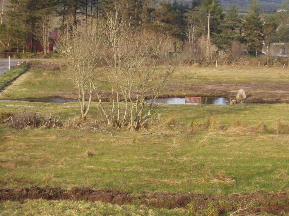 Installin permaculture pond at Bealtaine Cottage