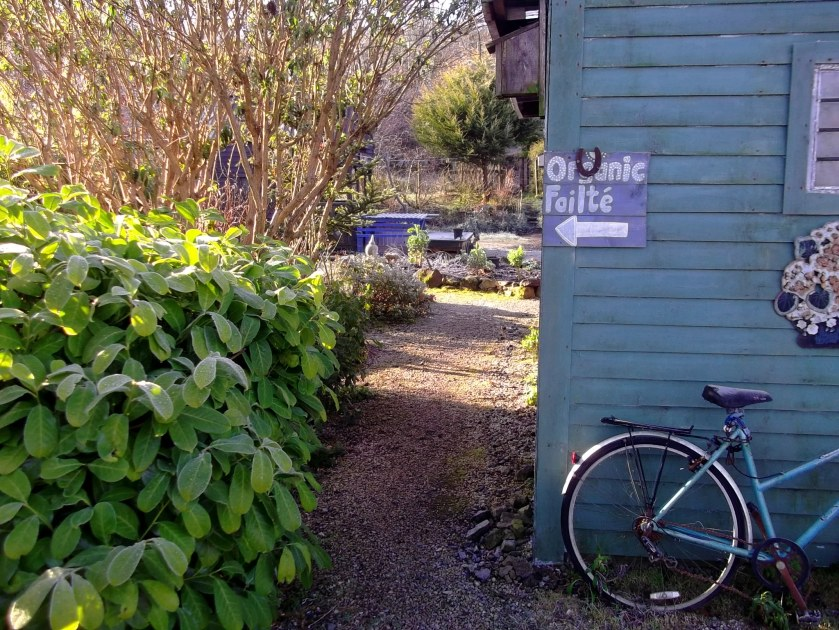 Welcome to the Permaculture Gardens of Bealtaine Cottage