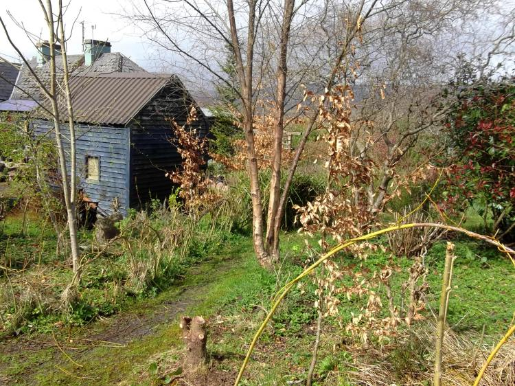Permaculture gardens in April at Bealtaine Cottage