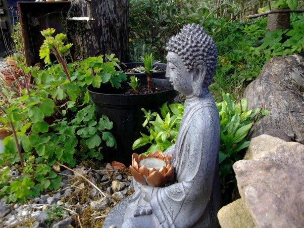 Buddha at Bealtaine Cottage Ireland