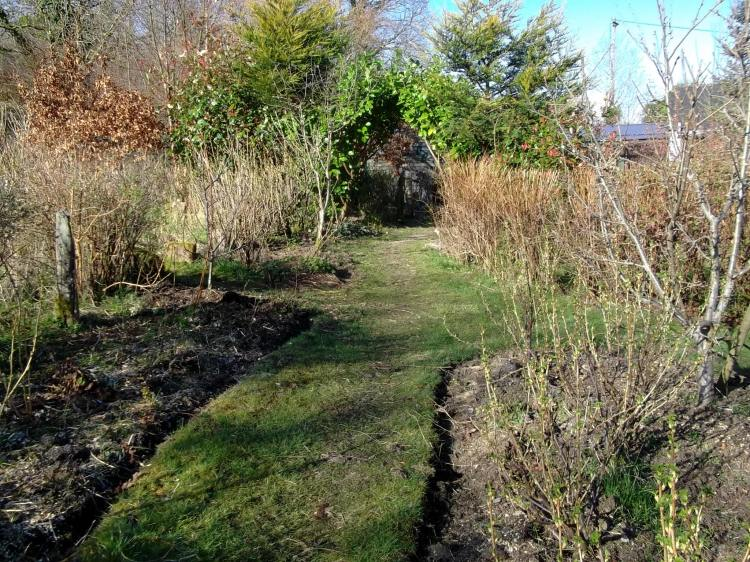 April 2013 Permaculture gardens at Bealtaine Cottage