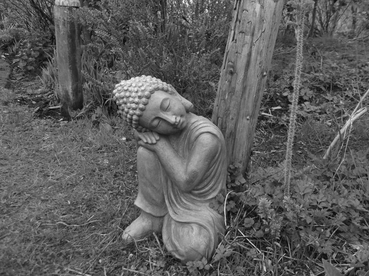 Buddha at Bealtaine Cottage Permaculture Gardens